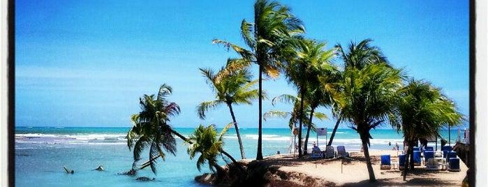 Praia de Pratagy is one of Maceió e região.