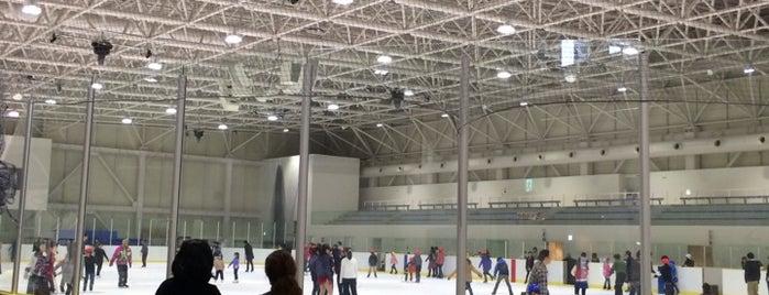 Niigata Asahi Alex Ice Arena is one of スケートリンク.