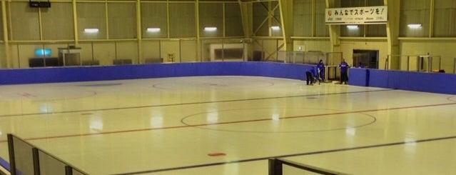 今市青少年スポーツセンター is one of スケートリンク.