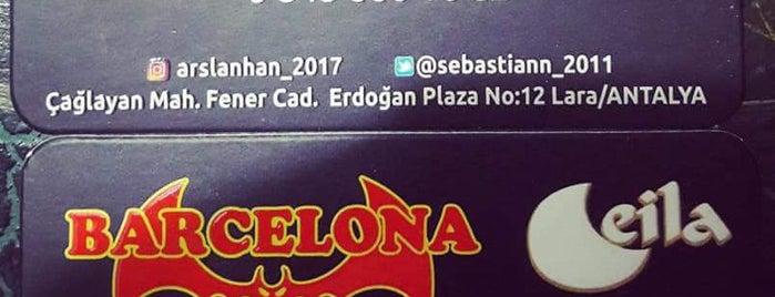 Dedeman is one of themaraton.