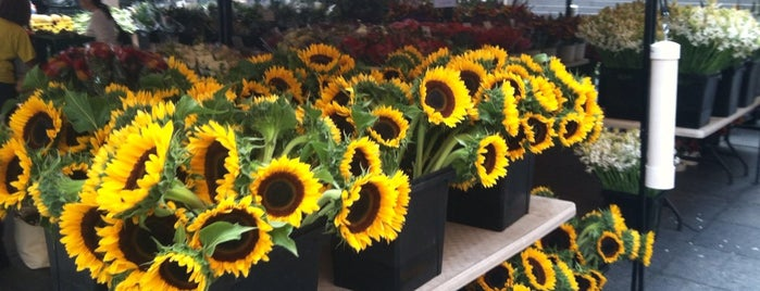 MCA Farmers Market is one of Streeterville & Gold Coast.