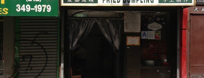 Shan Dong Fried Dumpling is one of Pretend I'm a tourist...NYC.