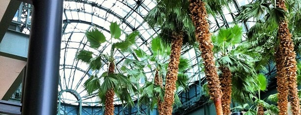 Winter Garden Atrium is one of The 15 Best Performing Arts Venues in New York City.