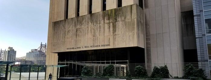 Weiss Building is one of Rockefeller Buildings.