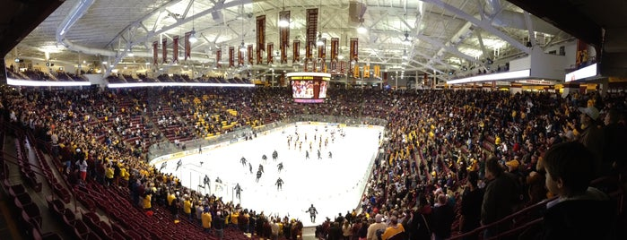 Mariucci Arena is one of Sporting Venues~Part 2....