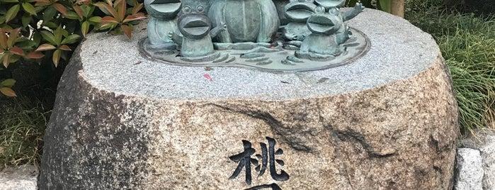 阿佐谷けやき公園 is one of チェックインする.