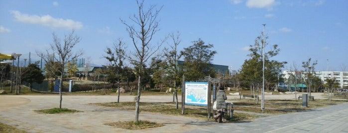 尼崎の森中央緑地 is one of 公園.