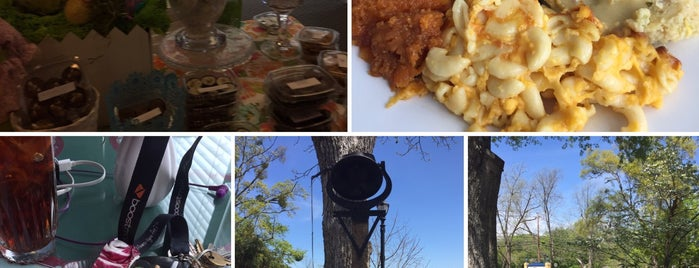 Blue Willow Inn Restaurant is one of 500 Things to Eat & Where - South.