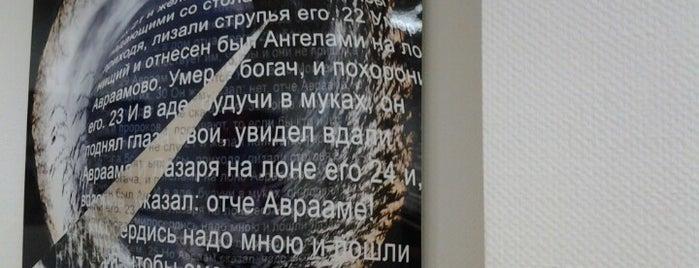 Институт философии, теологии и истории св. Фомы is one of Философия в Москве.