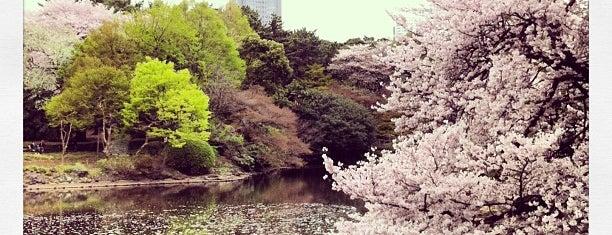 Shinjuku Gyoen is one of Tokyo City Guide.