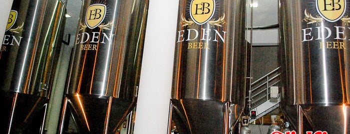 Eden Beer is one of Estive.