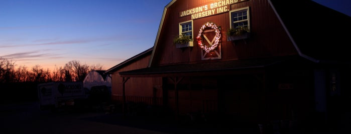 Jackson's Orchard & Nursery is one of Bowling Green, Kentucky Attractions.