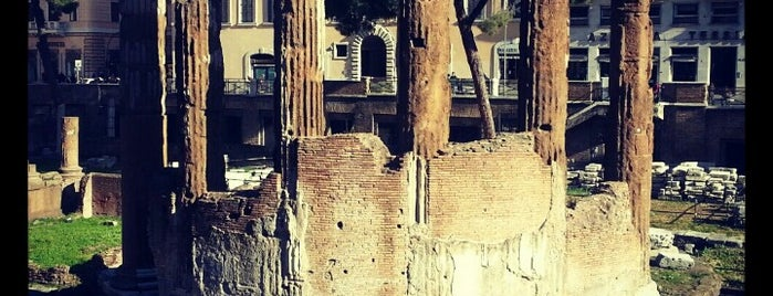 Largo di Torre Argentina is one of Roma, it.