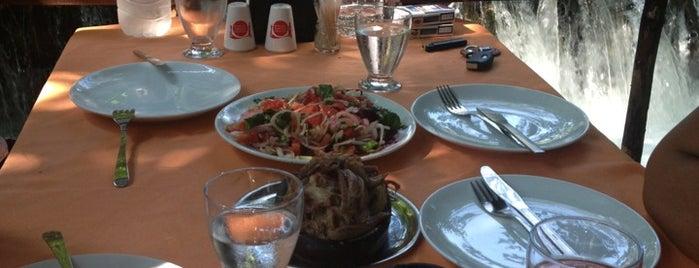Tandır Restaurant is one of MUĞLA YEMEK.