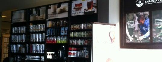 Starbucks is one of Food & Drinks.
