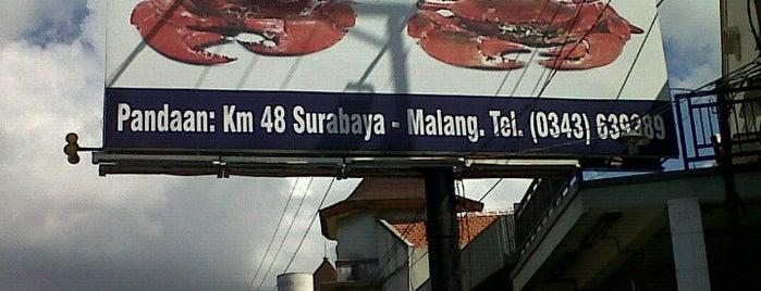 Kepiting Cak Gundul 1992 is one of local Guide surabaya, indonesia.