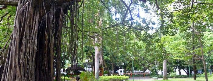 Parque da Jaqueira is one of Prefeitura.