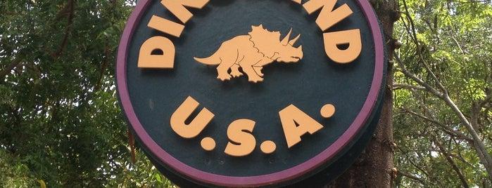 DinoLand U.S.A. is one of Walt Disney World.