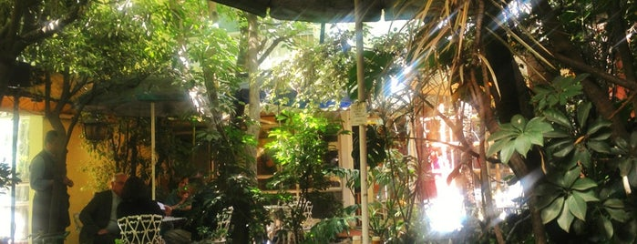 Jardin Interior is one of The 15 Best Places for a Healthy Food in Mexico City.