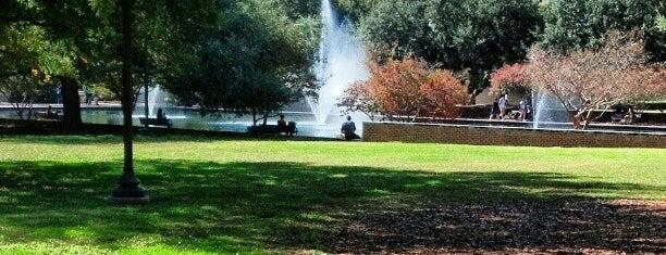 University of South Carolina is one of My Life.