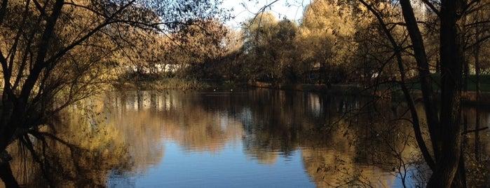 Леоновский пруд is one of прогулки.