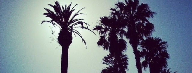 Palisades Park is one of California..