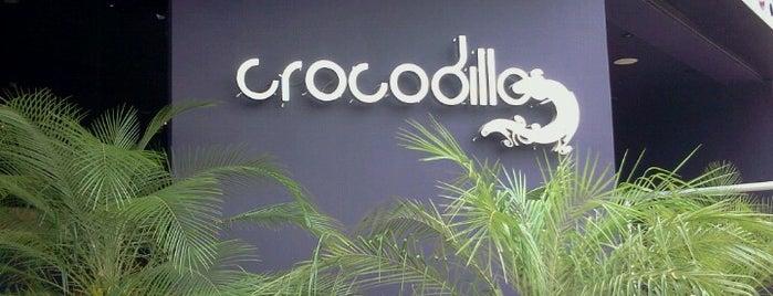 Crocodillo Club is one of Sorocity.