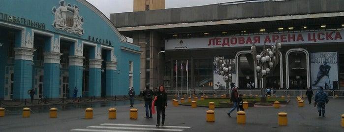 Спортивный плавательный комплекс ЦСКА is one of Call it Moscow!.