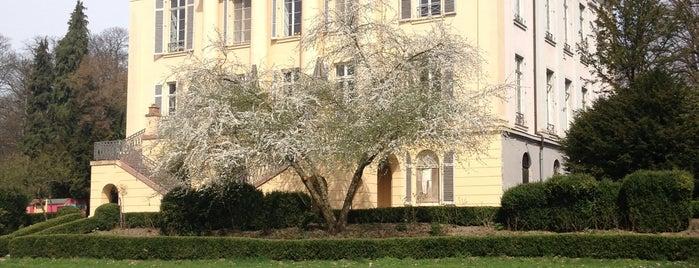 Schloss Freudenberg is one of Mainz♡Wiesbaden.