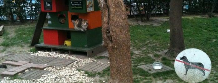 Mıstık Parkı is one of İstanbul Avrupa Yakası #4 🍁🍃.
