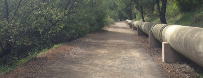 Los Gatos Creek Trail is one of Nor Cal Destinations.