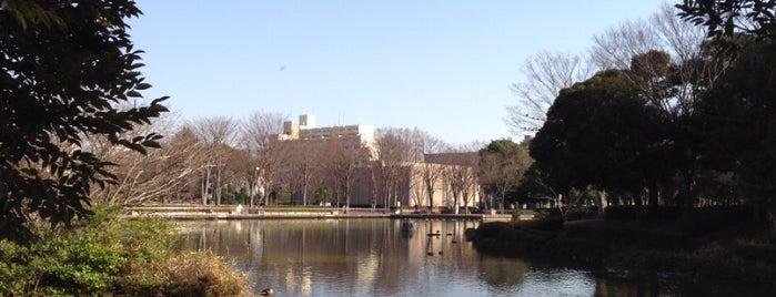 Chuo Park is one of りんりんロードポタ♪.
