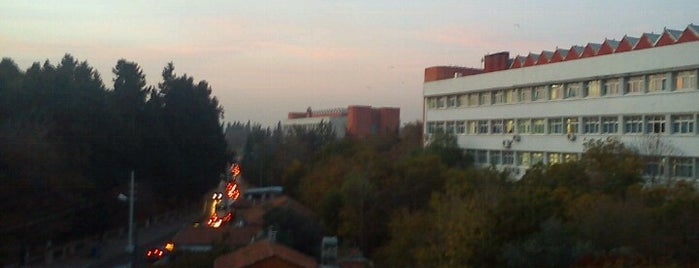 Dokuz Eylül Üniversitesi is one of İzmir.