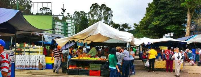 Mercadito de Los Castores is one of Lugares Visitados.