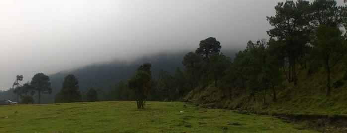 Parque Nacional Cumbres del Ajusco is one of PTS - Around México City.