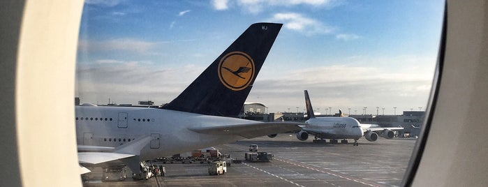 Lufthansa Flight LH 462 is one of The Lufthansa A380 flights.