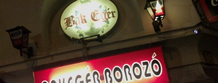 Bakegér Borozó is one of The best cheap pubs in downtown Budapest.