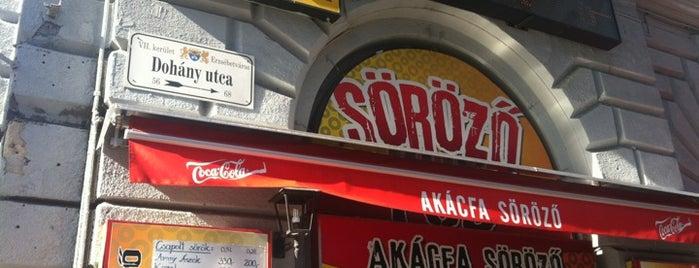 Akácfa Söröző is one of The best cheap pubs in downtown Budapest.