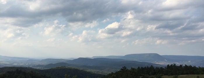 Nagy-szénás tető is one of Budai hegység/Pilis.