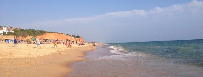 Praia de Vale do Lobo is one of Guía del Algarve.