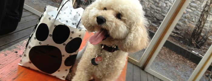 d.b.a. is one of Our 17 Favorite Pup-Friendly Places.