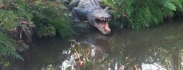 Parque Biológico de Gaia is one of Lazer & Passeios (Grande Porto).