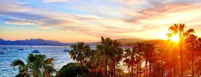Boulevard de la Croisette is one of Cannes - Must do.
