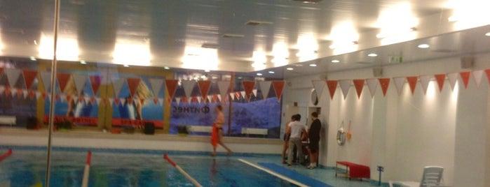 Orange Fitness is one of бауманка.
