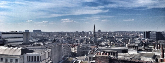 Favorite Places in Brussels
