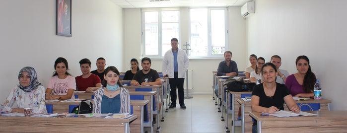 Eskişehir Serbest Muhasebeciler Mali Müşavirler Odası is one of Eskişehir'deki Meslek Odaları.