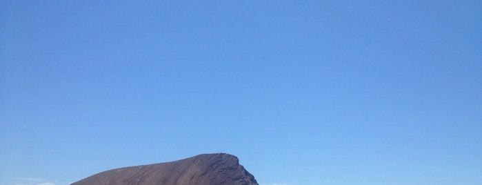 Playa La Tejita is one of Turismo por Tenerife.