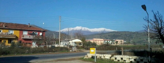 Kiraz is one of İzmir.