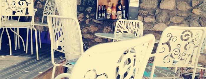 Octopus wine bar is one of Γιάμς εν Μπάρδς.