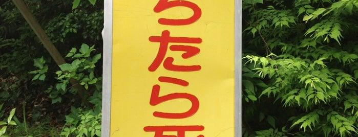 「落ちたら死ぬ!!」の看板 is one of 何コレ10.